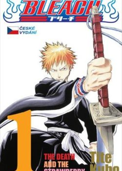 Bleach: The Death and the Strawberry